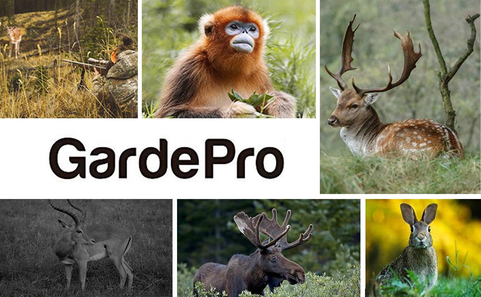 GardePro--A3