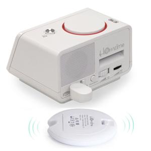 bed shaker wireless