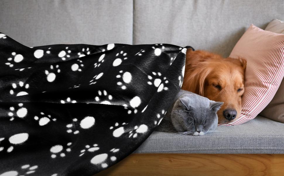 Nobleza – 6 x Manta Suave de Felpa para Perros, Gatos y Otras Mascotas. Lavable. Color Negro, 120 * 100 cm: Amazon.es: Productos para mascotas