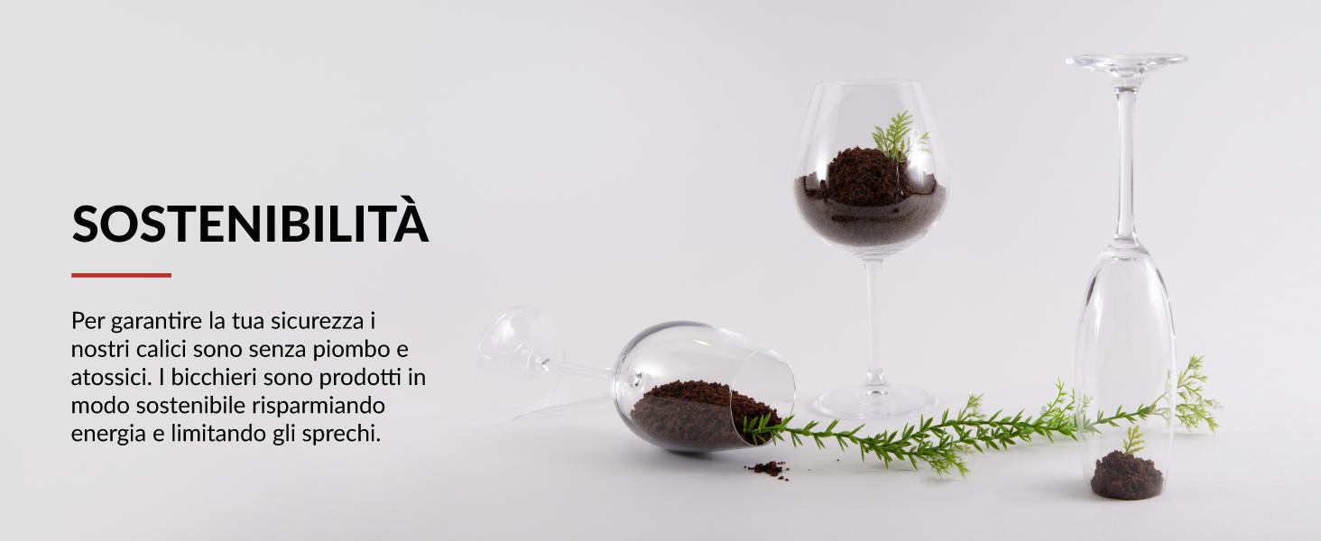 set cristalli da vino senza piombo bicchieri champagne ecologici
