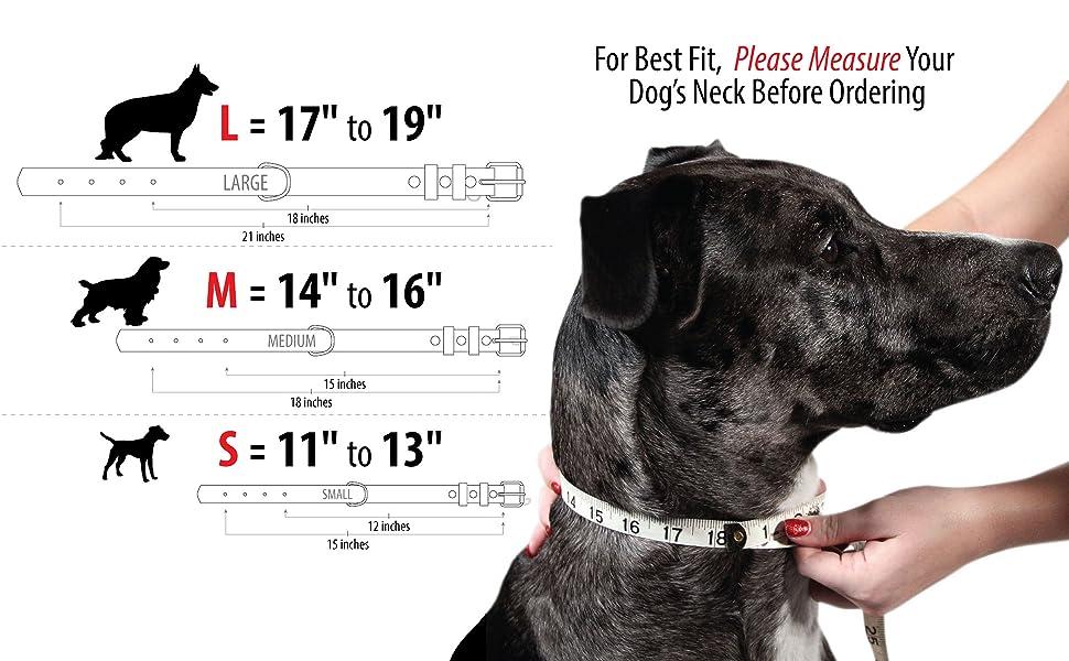 Ajustable Acolchado de Piel aut/éntica para Perros Grandes y medianos 30cmx1.5cm Gelentea Collar de Perro de Piel sint/ética Acolchada marr/ón Duradero y c/ómodo Resistente