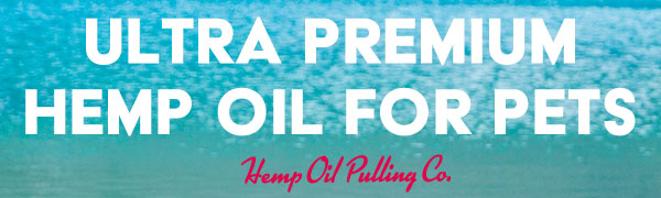 hemp oil for dogs, dog hemp oil, hemp oil for pets, pet hemp oil