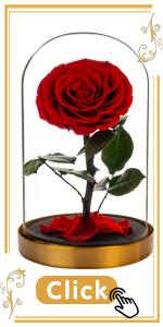 Red Roses Scarlet Crimson Ruby Flushed Reddish Bloodshot brick red rosy flower