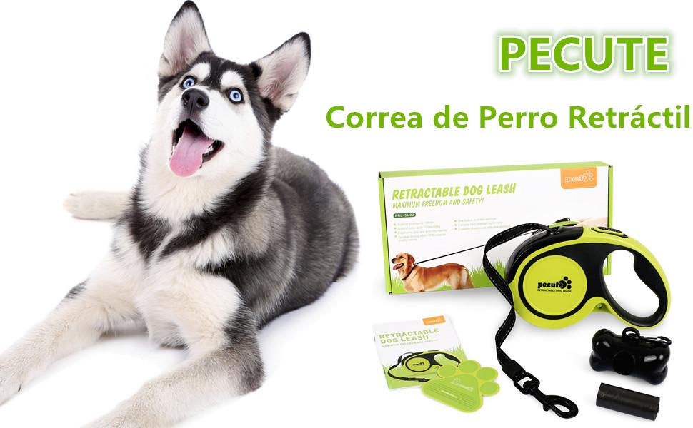 Pecute Correa de Perro Retráctil 2019 Versión Mejorada con ...