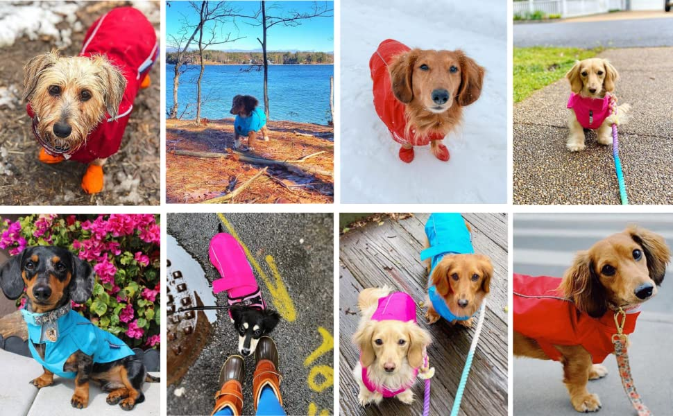 We absolutely love seeing all of your photos! Here are just a few pics from the DJANGO pack.