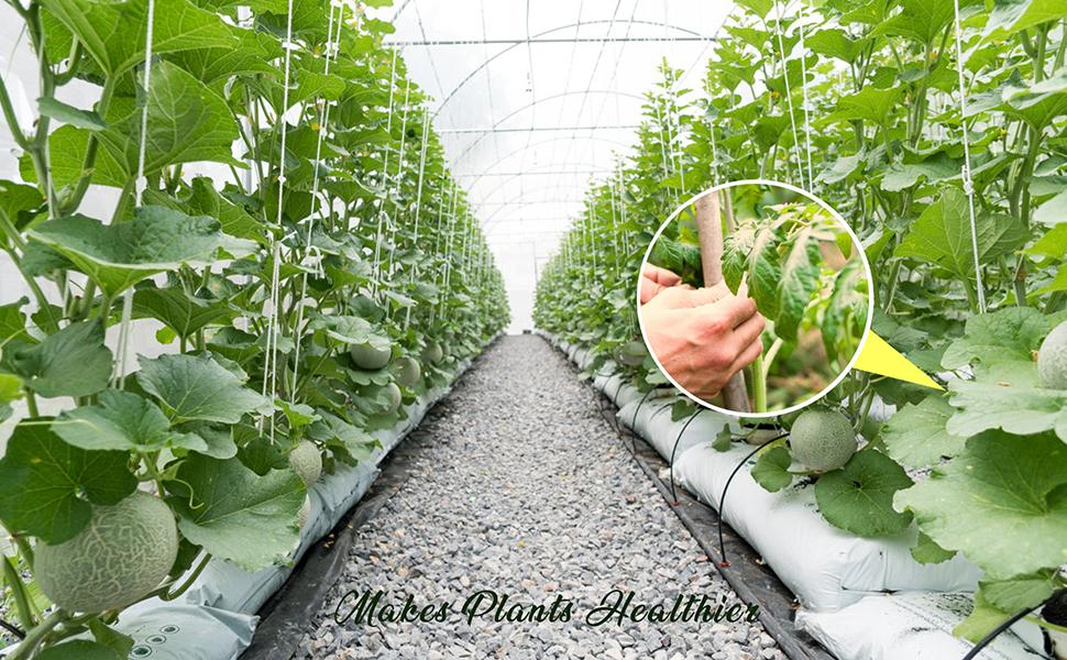 Amazon Com Leobro 150pcs Plant Support Garden Clips For Vine