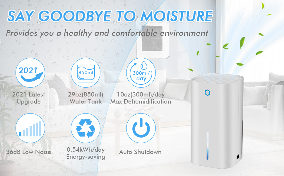 dehumidifiers for home