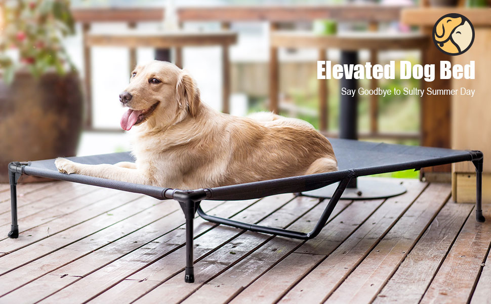 elevated dog bed cooling dog cot raised pet bed