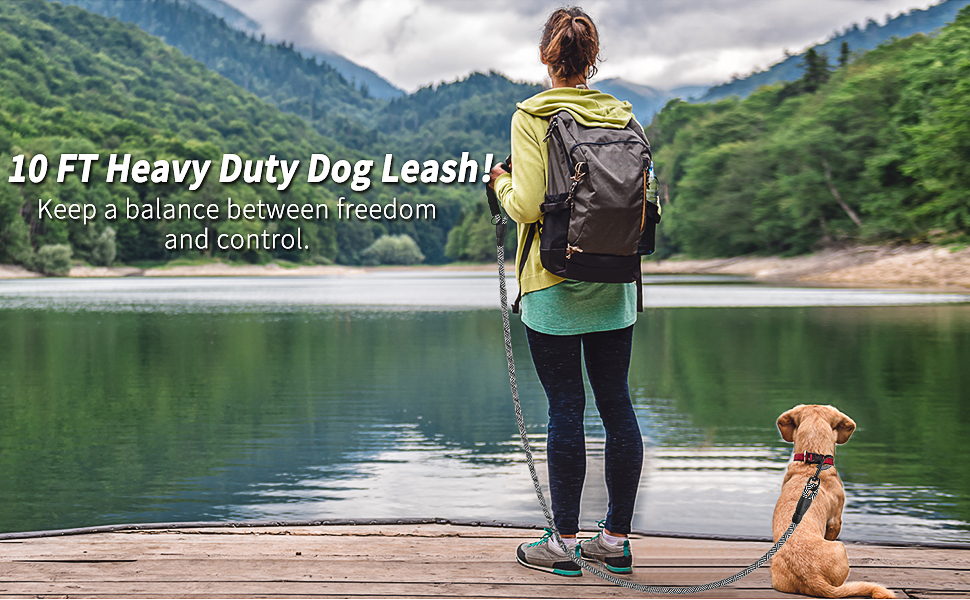 dog leashes