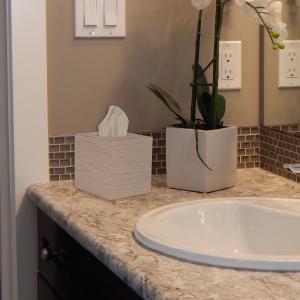 Whitewash tissue box cover