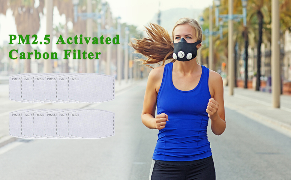 PM2.5 Activated Carbon Filter