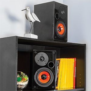 bookshelf speakers for records turntables home theater music player passive quality audio custom