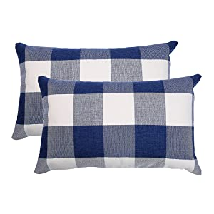 blue and white pillow covers
