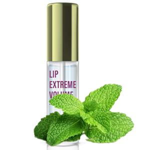 Latorice - Mint Lip Plumper