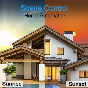 scene control, smart switch, smart light switch
