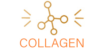 collagen care hips and joints