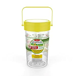 bees bugs trap exterminate chemical removal contain toxic kit garden prevent contraption killer fly