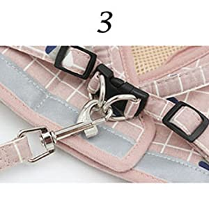 metal clasp leash attachment