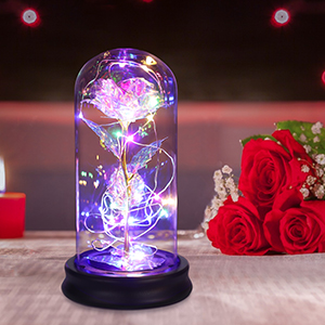 glass galaxy beauty and the beast infinity forever rose Birthday Christmas Mother's Day gift for her
