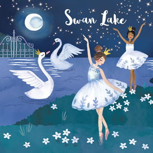 dancer ballerina swan lake pink gift