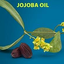 LetsShave pre shave oil softens skin essential oil paraben sulphate free jojoba oil