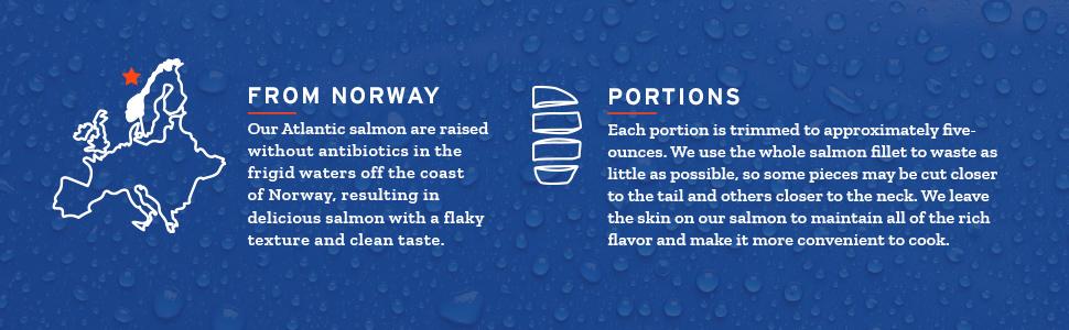 atlantic salmon traceable norway fresh frozen portions omega3