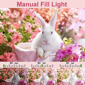Manual Fill Light