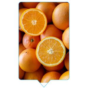 vitamin c and zinc immune boost