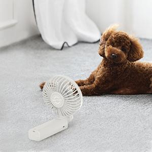handheld fan