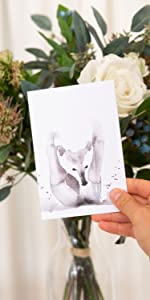 Cute Wildlife Greeting Cards Box of 24 cards with Envelopes and Stickers