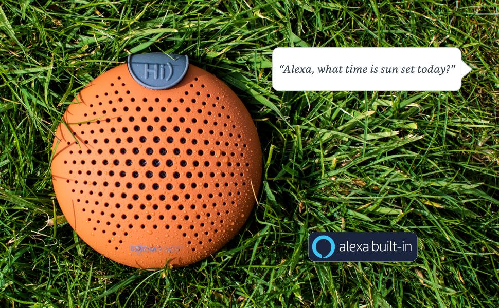 alexa speaker