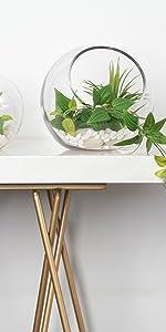 slant cut terrarium candy fruit jar container planter floral arrangement display design WGV