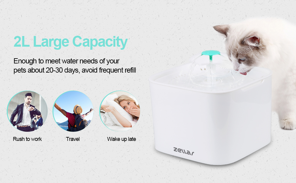 pet fountain water dispenser