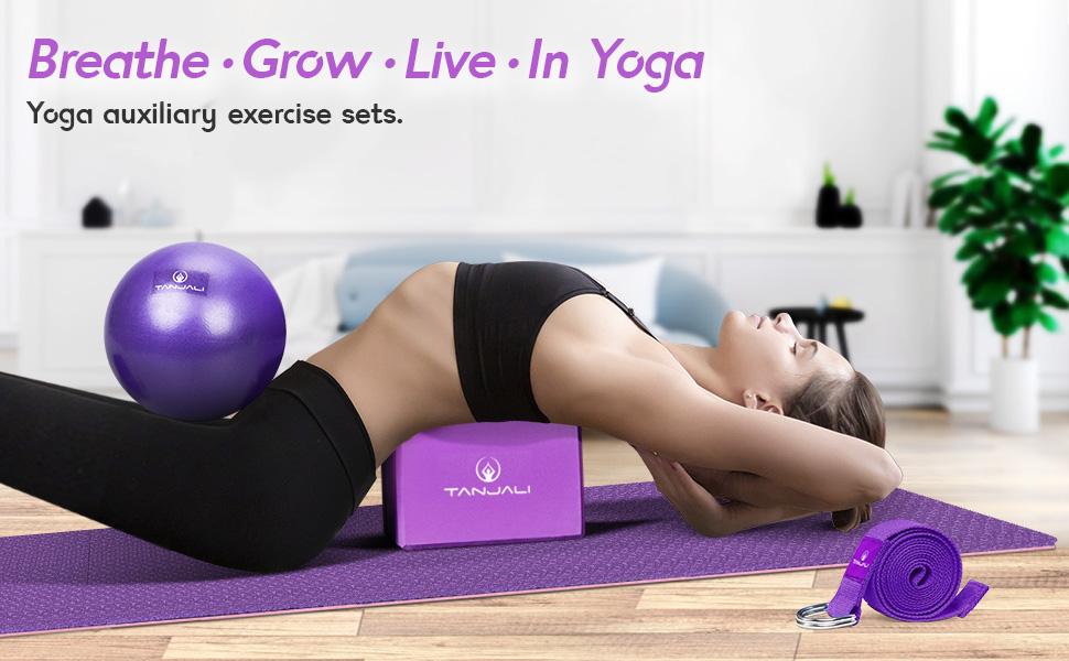 yoga blocks 2 pack