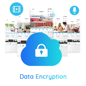 Data Encryption, Cyber Security