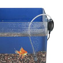 oxygen fish air pump