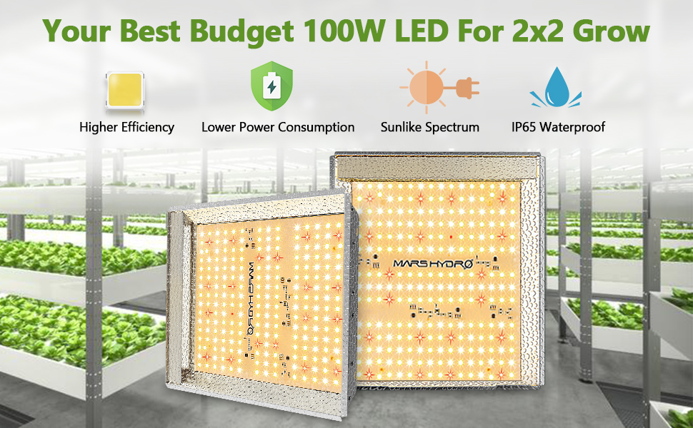 led grow lamp