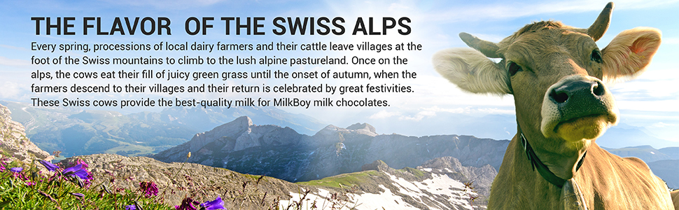 milkboy swiss chocolates the flavor of the swiss alps made from best quality milk
