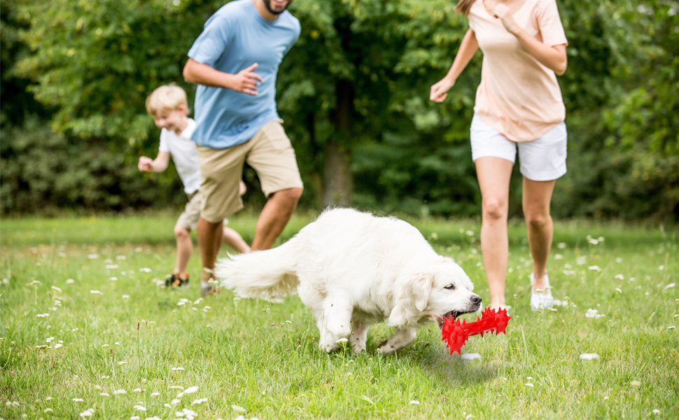Dog Chew Toy Indestructible for Aggressive Chewers