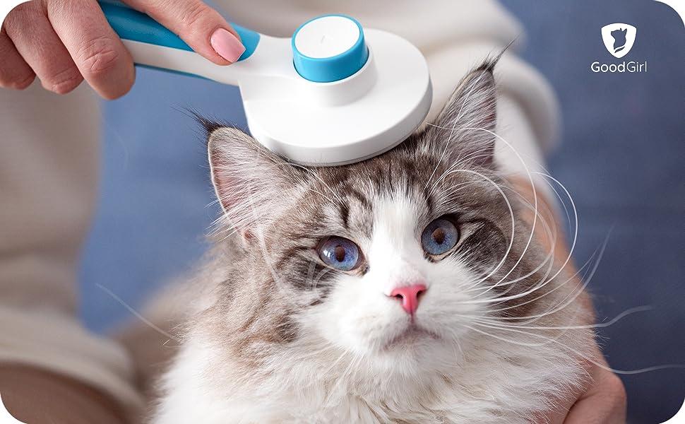 Goodgirl, brush, cat self clean