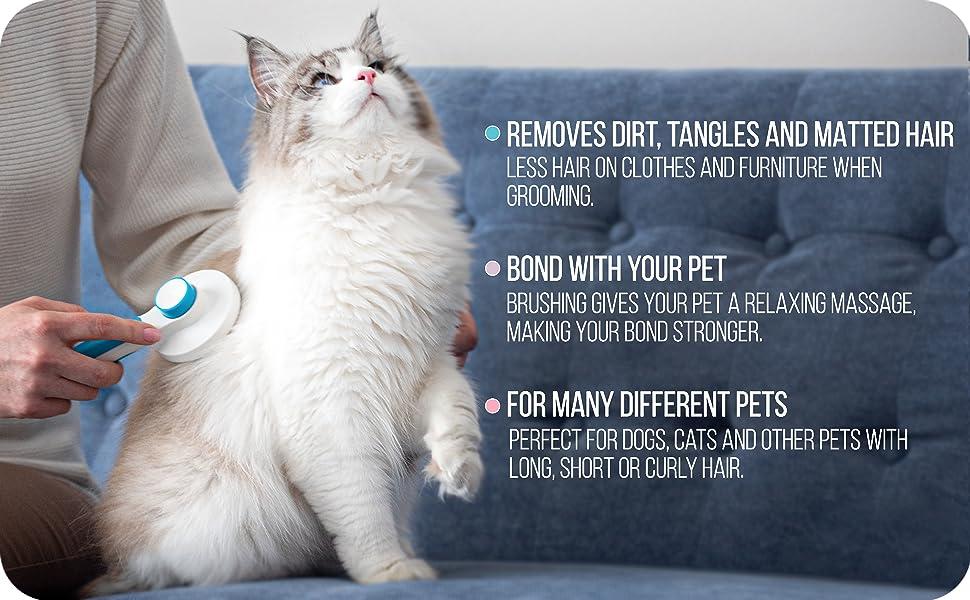 features cat comb brush