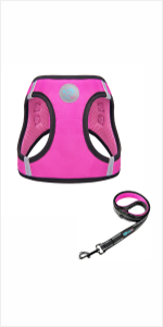 Step-in Harness & Leash Set