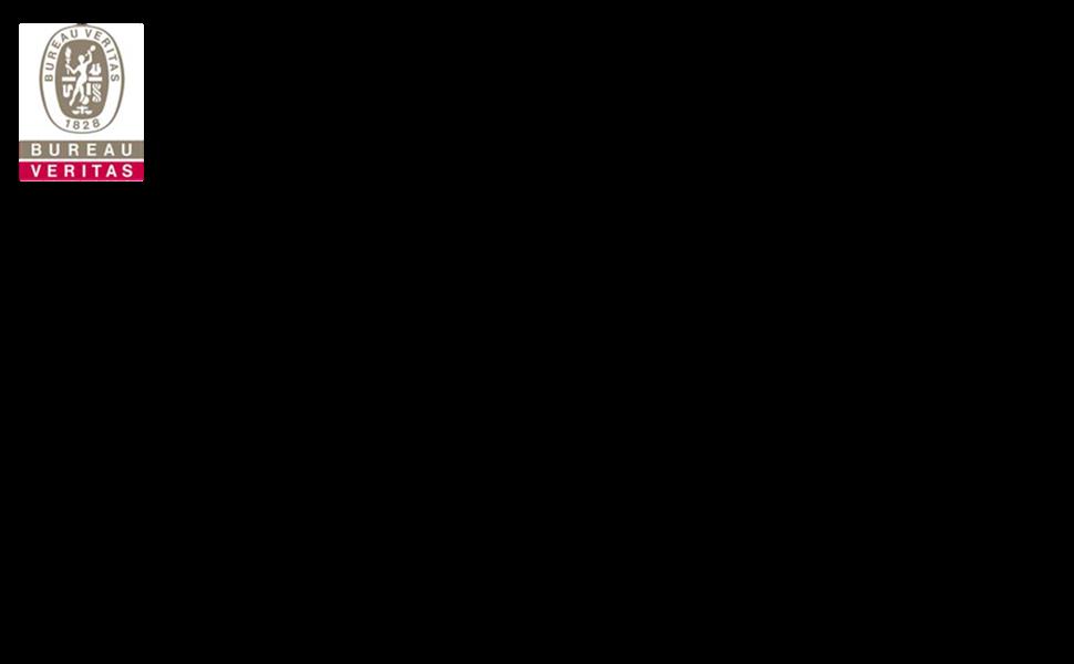 BUREAU VERITAS 1