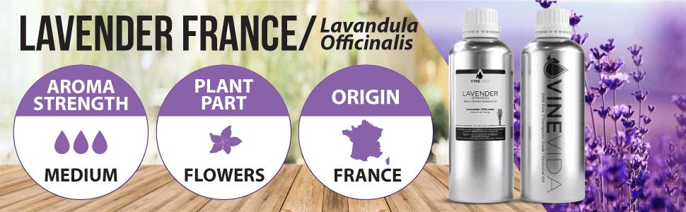 Lavender (France) 32 Oz