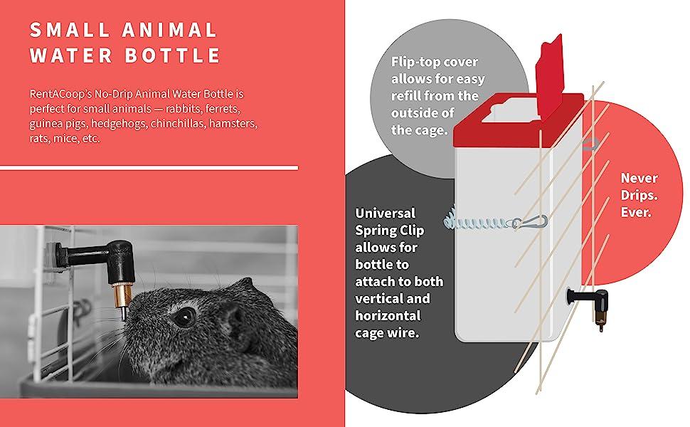 rentacoop nipple animal waterer water bottle small hamster rat rabbit bunny
