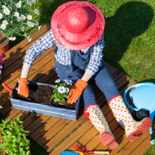 A woman transplanting her flowers into a flower box on a beautiful spring day