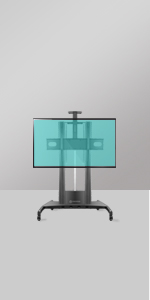 TS2210 mobile tv stand