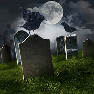 Artificial raven