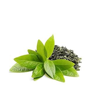 green tea curlsmith ingredient