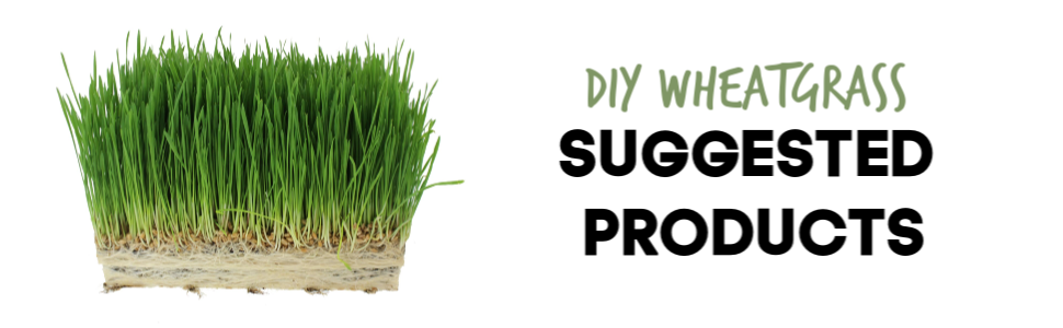 handy pantry wheatgrass sprouting seeds suggested products